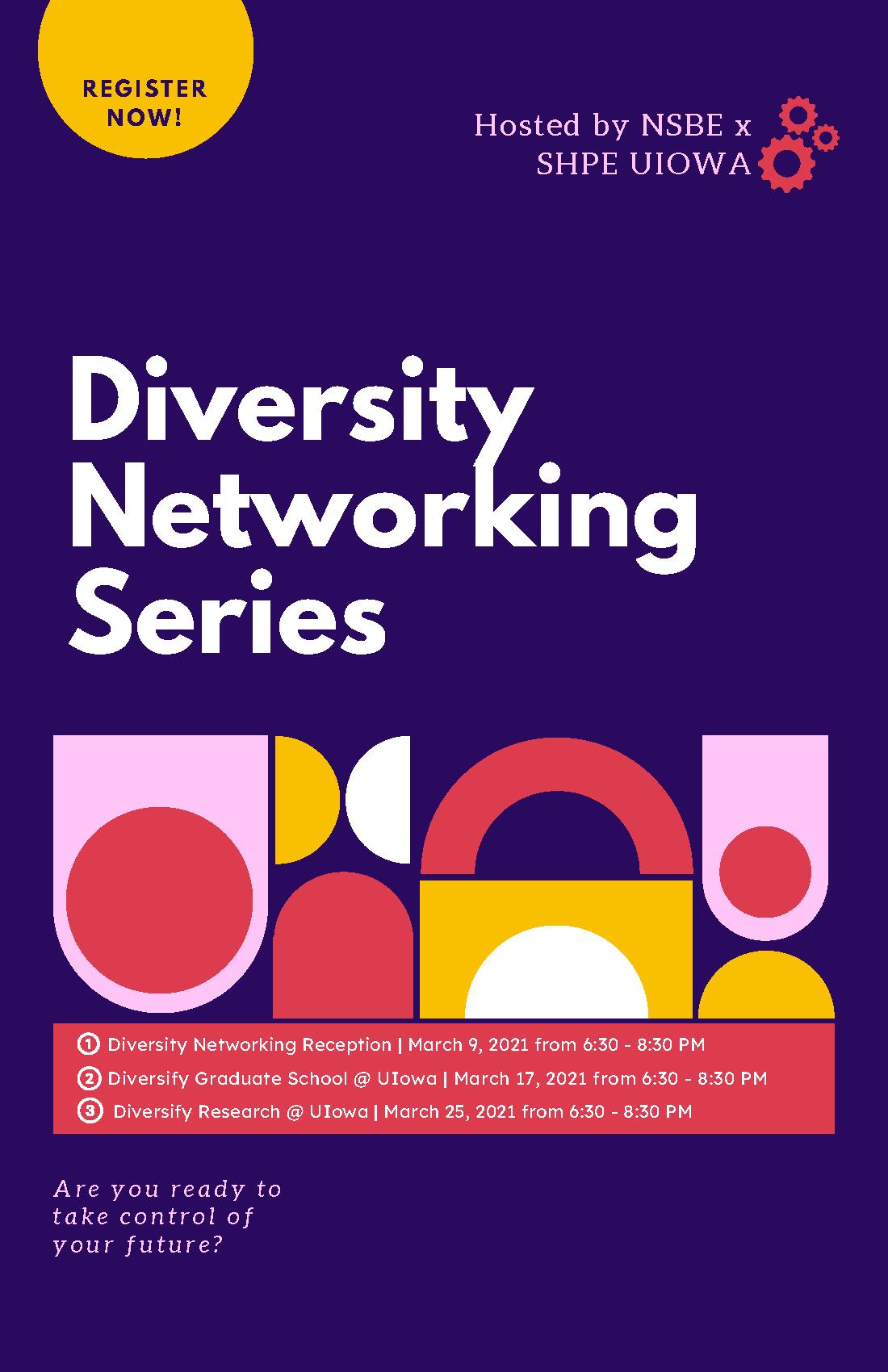 Diversity Networking flyer