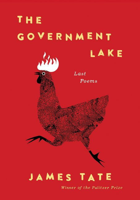 The Government Lake book cover