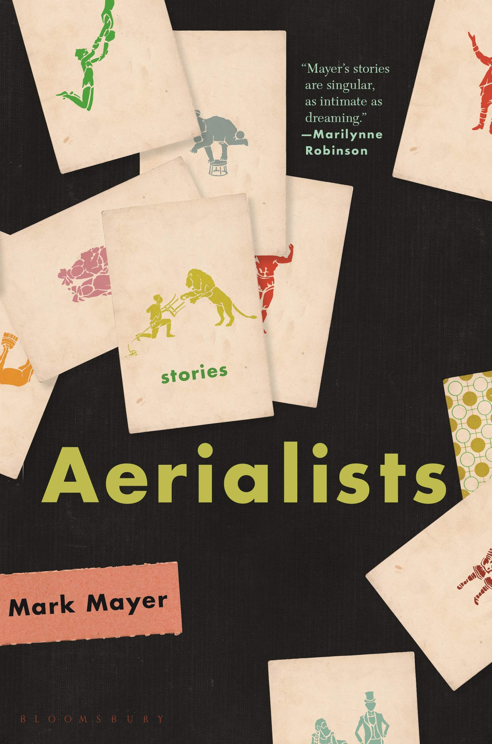 The Aerialists book cover