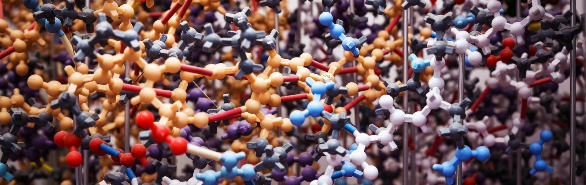Virtual Biochemistry Seminar: Dr. Sandipan Chowdhury promotional image
