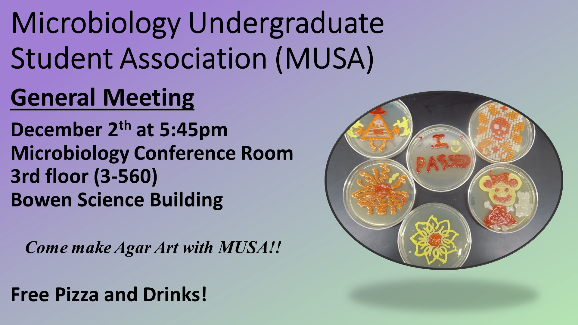 MUSA December 2019 meeting and make agar art